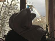 32 Mitbewohner am Regenbogenfuß