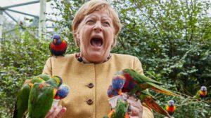Merkel vom Affen, äh, von der Fledermaus, äh, vom Vogel gebissen: SCHREIEND in Totalpanik